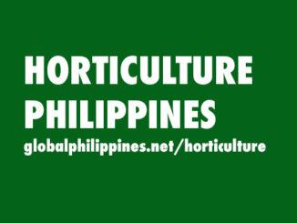 Horticulture Philippines