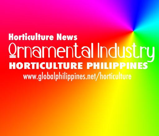Horticulture Philippines Ornamentals